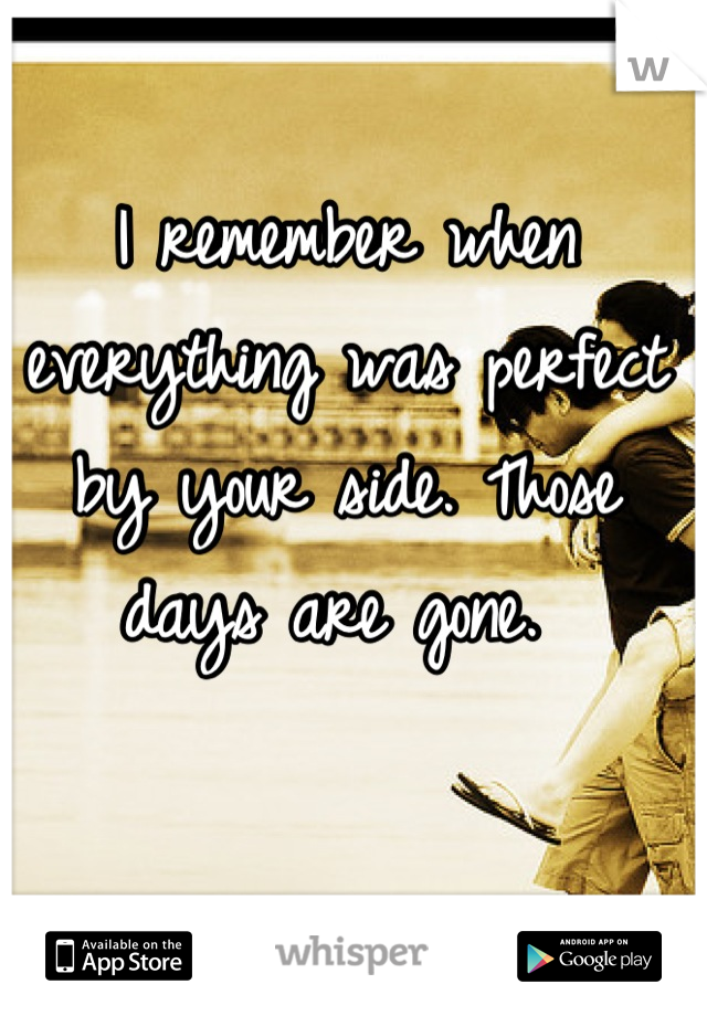 I remember when everything was perfect by your side. Those days are gone.