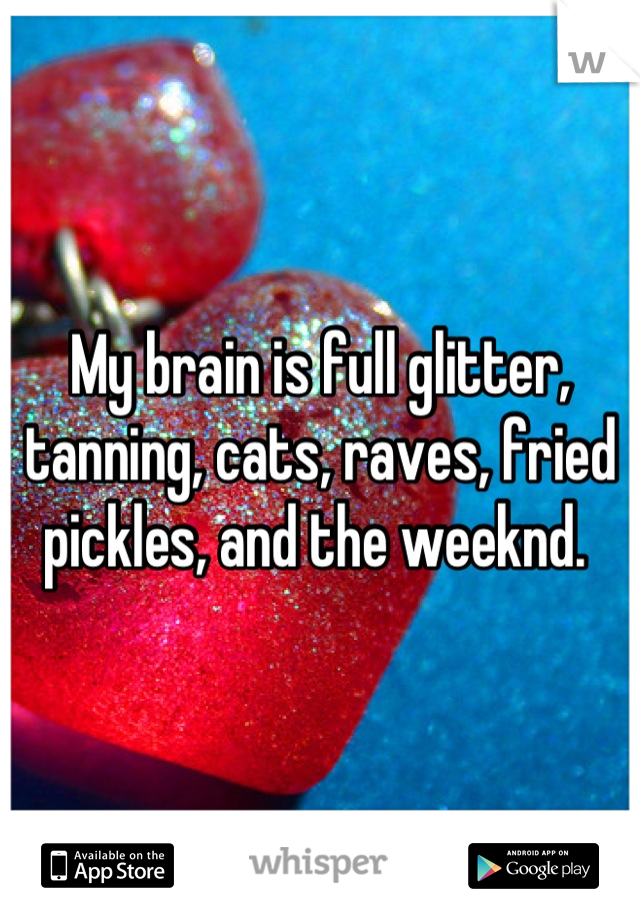 My brain is full glitter, tanning, cats, raves, fried pickles, and the weeknd.