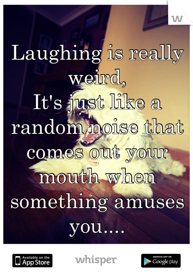 Laughing is really weird,  It's just like a random noise that comes out your mouth when something amuses you....