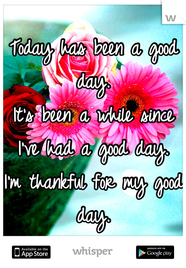Today has been a good day. It's been a while since I've had a good day. I'm thankful for my good day.