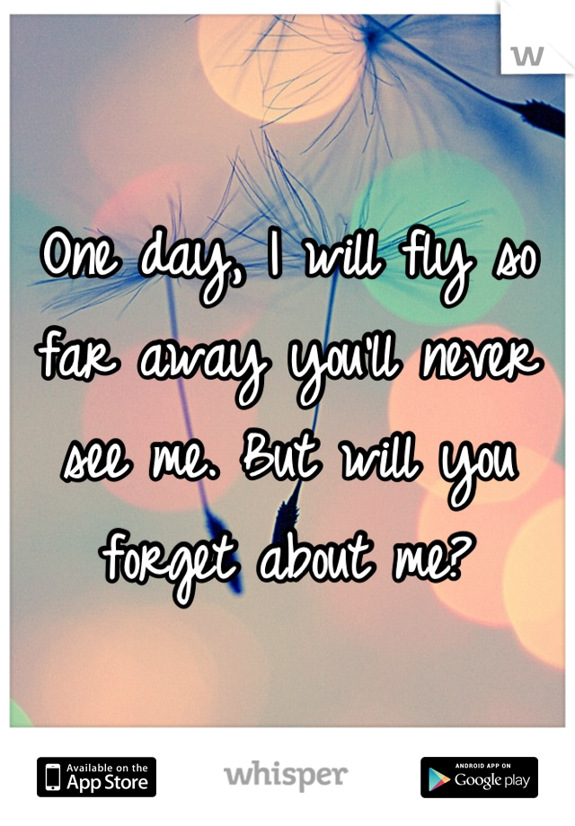 One day, I will fly so far away you'll never see me. But will you forget about me?