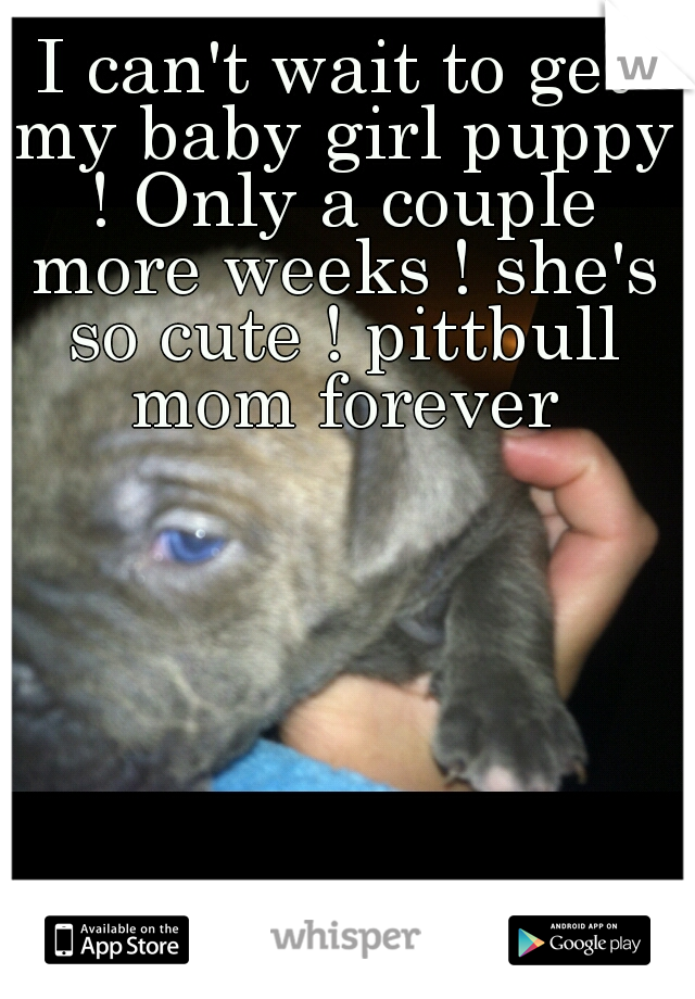 I can't wait to get my baby girl puppy ! Only a couple more weeks ! she's so cute ! pittbull mom forever
