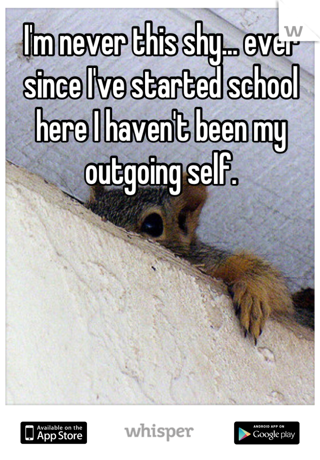 I'm never this shy... ever since I've started school here I haven't been my outgoing self.
