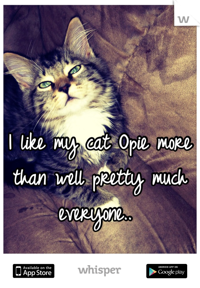 I like my cat Opie more than well pretty much everyone..