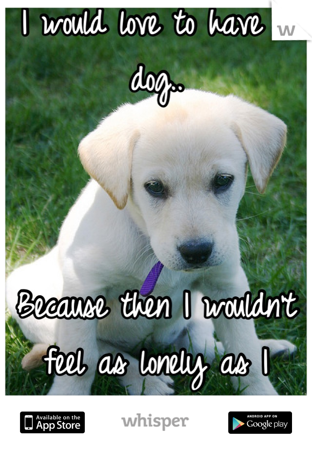 I would love to have a dog..     Because then I wouldn't feel as lonely as I always feel.