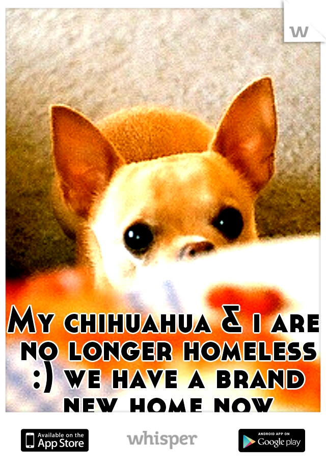 My chihuahua & i are no longer homeless :) we have a brand new home now