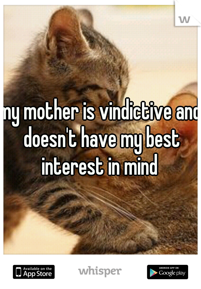 my mother is vindictive and doesn't have my best interest in mind