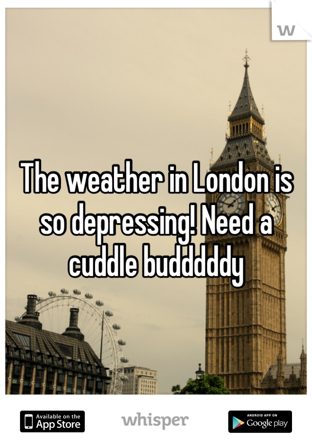 The weather in London is so depressing! Need a cuddle budddddy