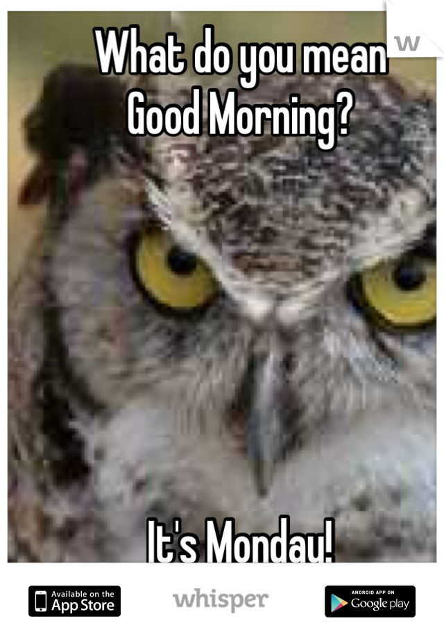 What do you mean  Good Morning?       It's Monday!