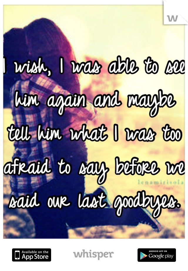 I wish, I was able to see him again and maybe tell him what I was too afraid to say before we said our last goodbyes.