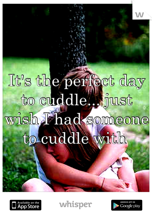 It's the perfect day to cuddle... just wish I had someone to cuddle with
