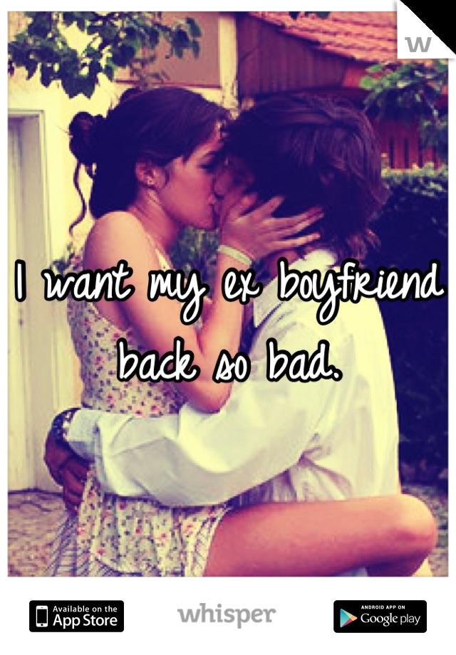 I want my ex boyfriend back so bad.