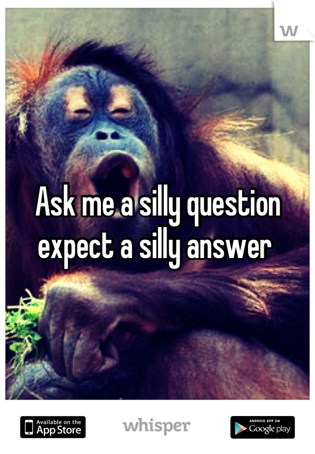 Ask me a silly question expect a silly answer