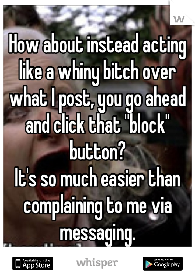 "How about instead acting like a whiny bitch over what I post, you go ahead and click that ""block"" button? It's so much easier than complaining to me via messaging."