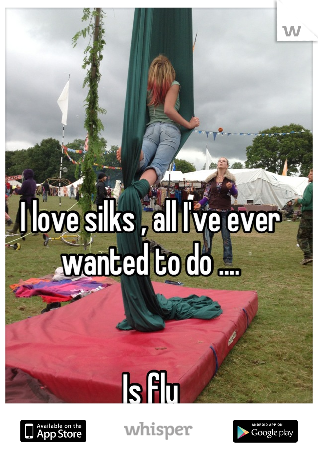 I love silks , all I've ever wanted to do ....    Is fly