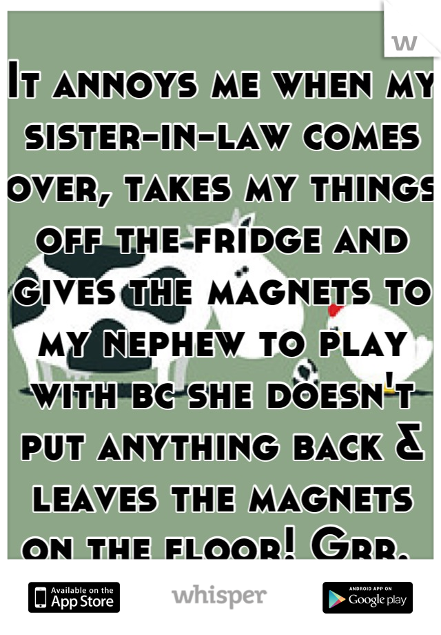 It annoys me when my sister-in-law comes over, takes my things off the fridge and gives the magnets to my nephew to play with bc she doesn't put anything back & leaves the magnets on the floor! Grr.