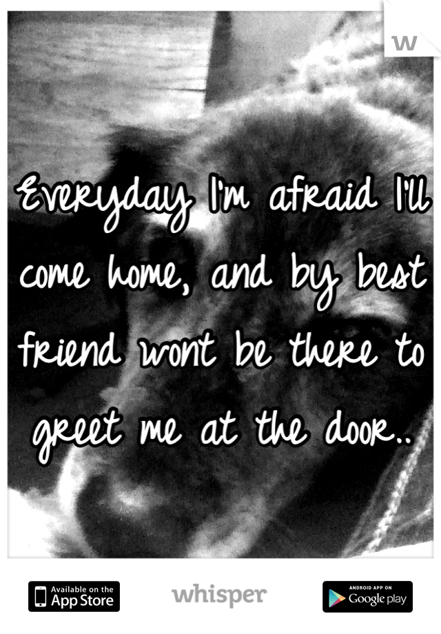 Everyday I'm afraid I'll come home, and by best friend wont be there to greet me at the door..