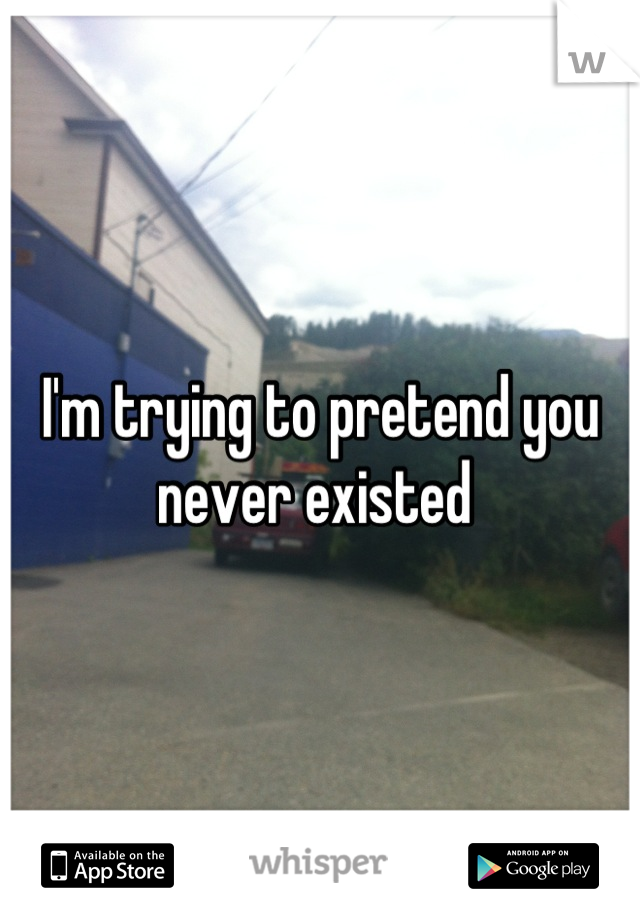 I'm trying to pretend you never existed