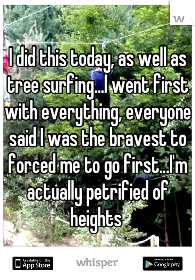 I did this today, as well as tree surfing...I went first with everything, everyone said I was the bravest to forced me to go first...I'm actually petrified of heights