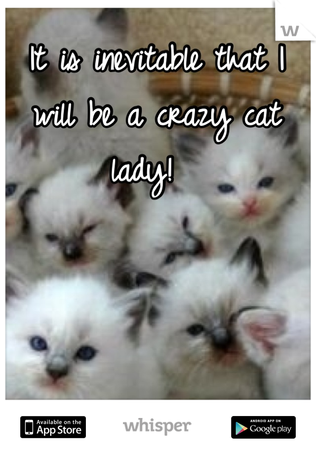 It is inevitable that I will be a crazy cat lady!