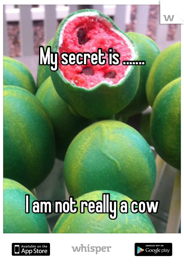 My secret is .......      I am not really a cow