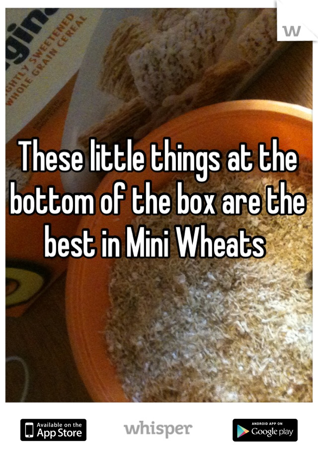 These little things at the bottom of the box are the best in Mini Wheats