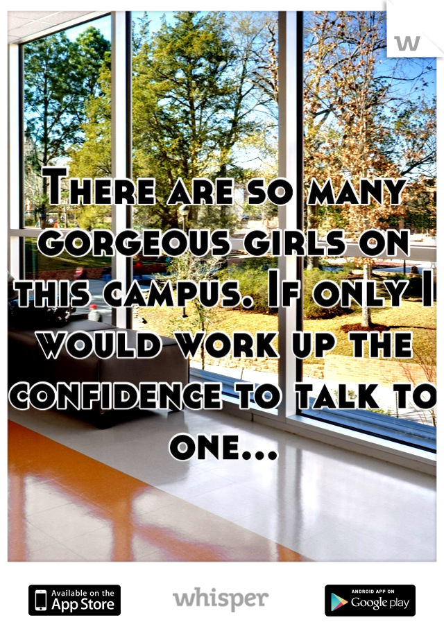 There are so many gorgeous girls on this campus. If only I would work up the confidence to talk to one...