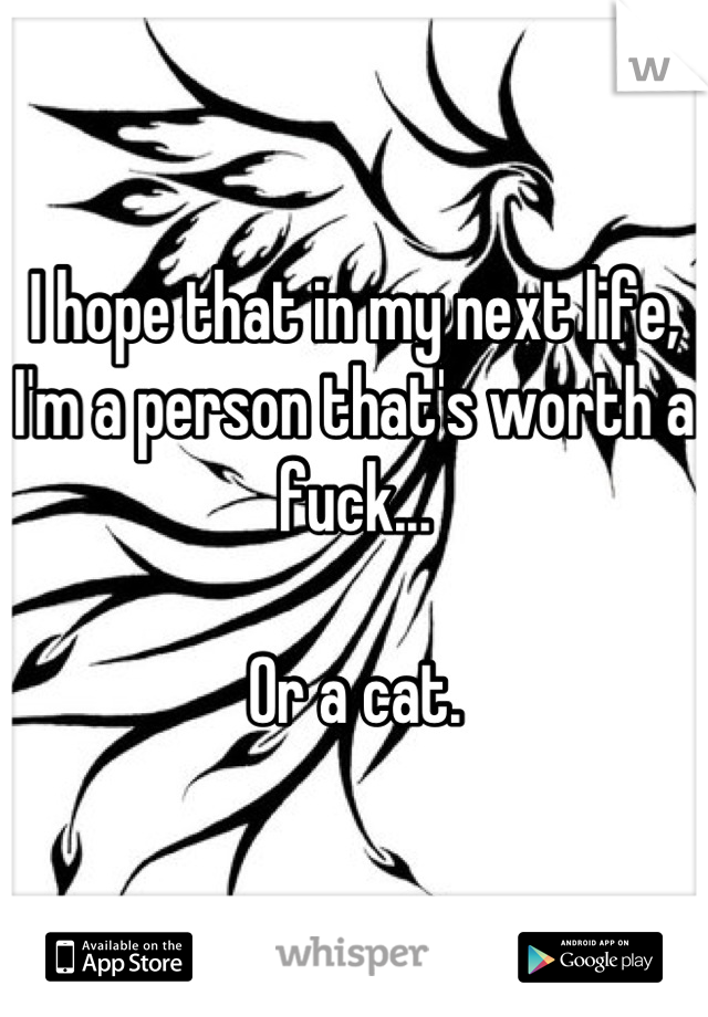 I hope that in my next life, I'm a person that's worth a fuck...  Or a cat.