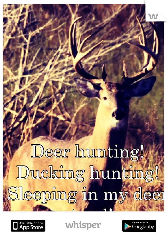 Deer hunting!  Ducking hunting!  Sleeping in my deer stand!  My kind of winter