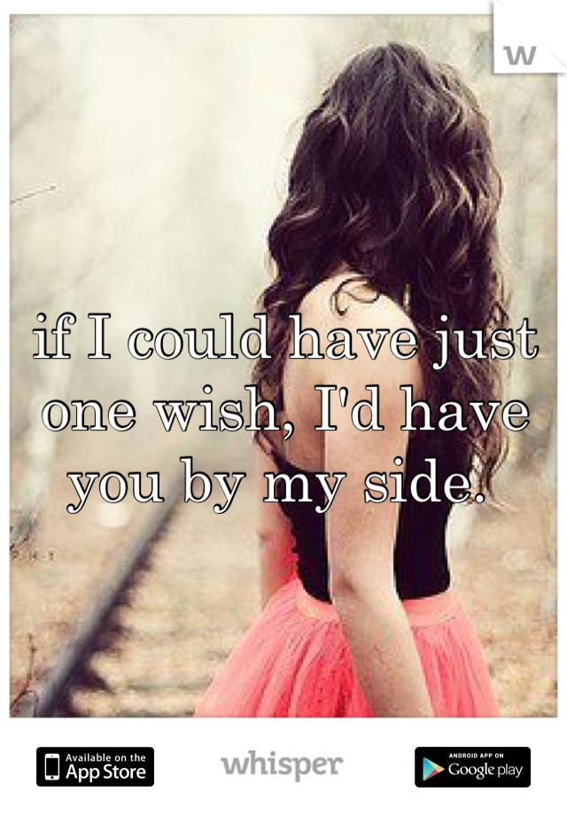 if I could have just one wish, I'd have you by my side.