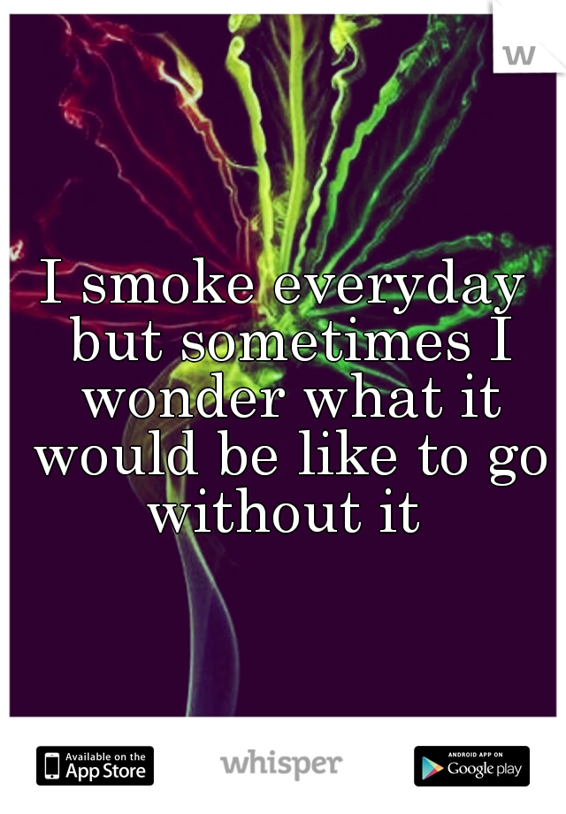 I smoke everyday but sometimes I wonder what it would be like to go without it