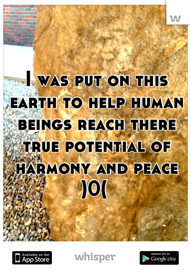 I was put on this earth to help human beings reach there true potential of harmony and peace )0(