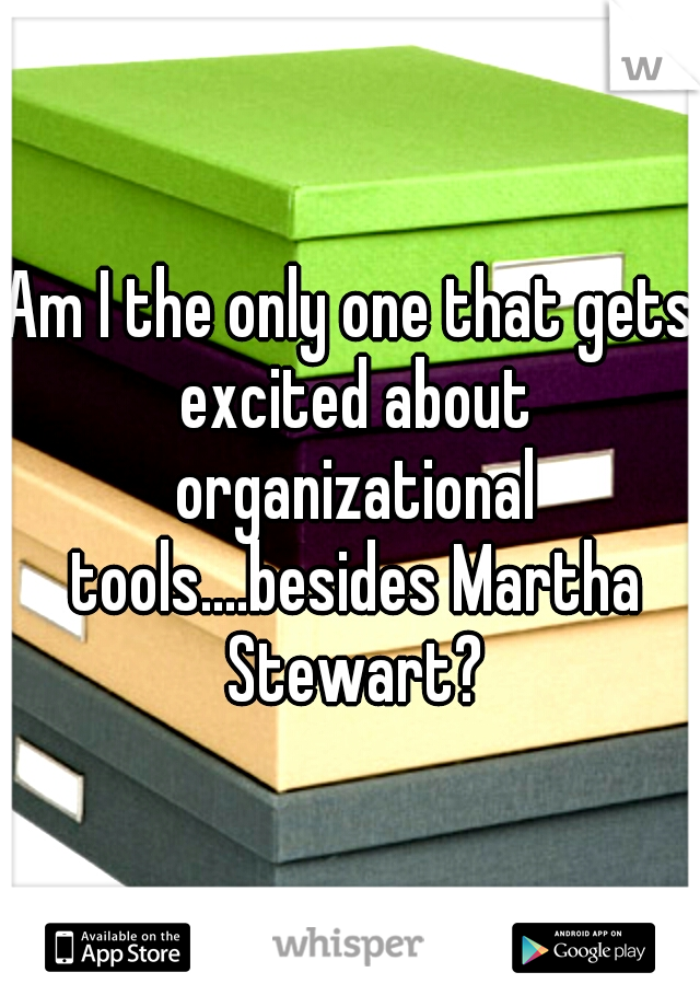 Am I the only one that gets excited about organizational tools....besides Martha Stewart?
