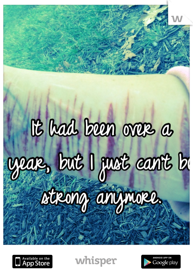 It had been over a year, but I just can't be strong anymore.