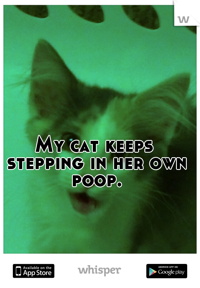 My cat keeps stepping in her own poop.