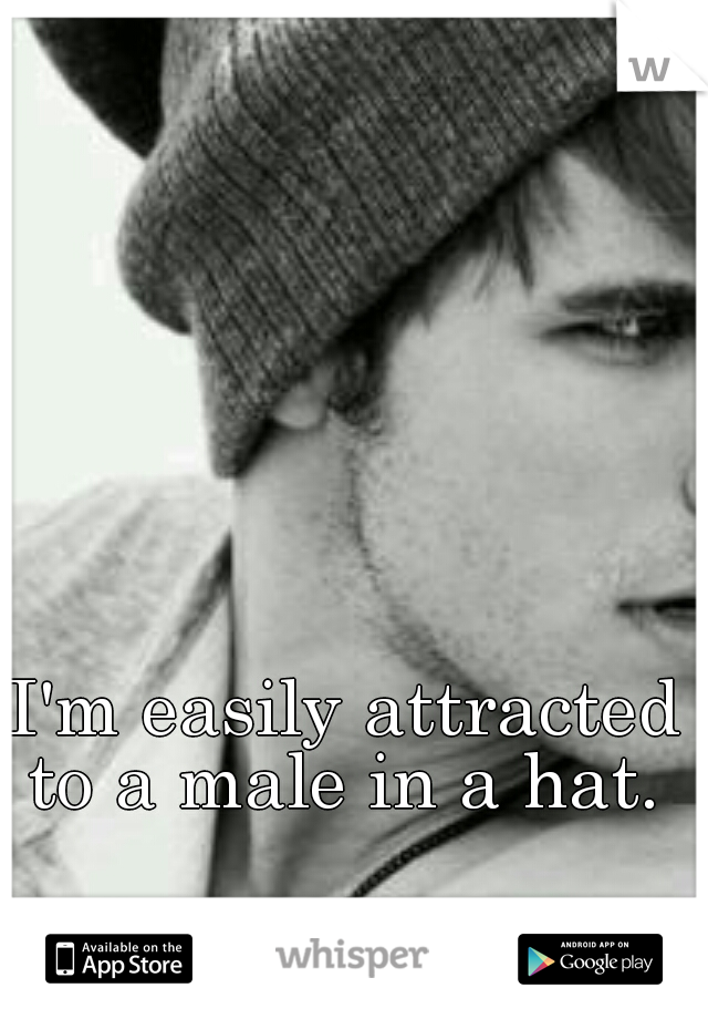 I'm easily attracted to a male in a hat.