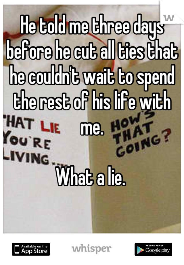 He told me three days before he cut all ties that he couldn't wait to spend the rest of his life with me.   What a lie.