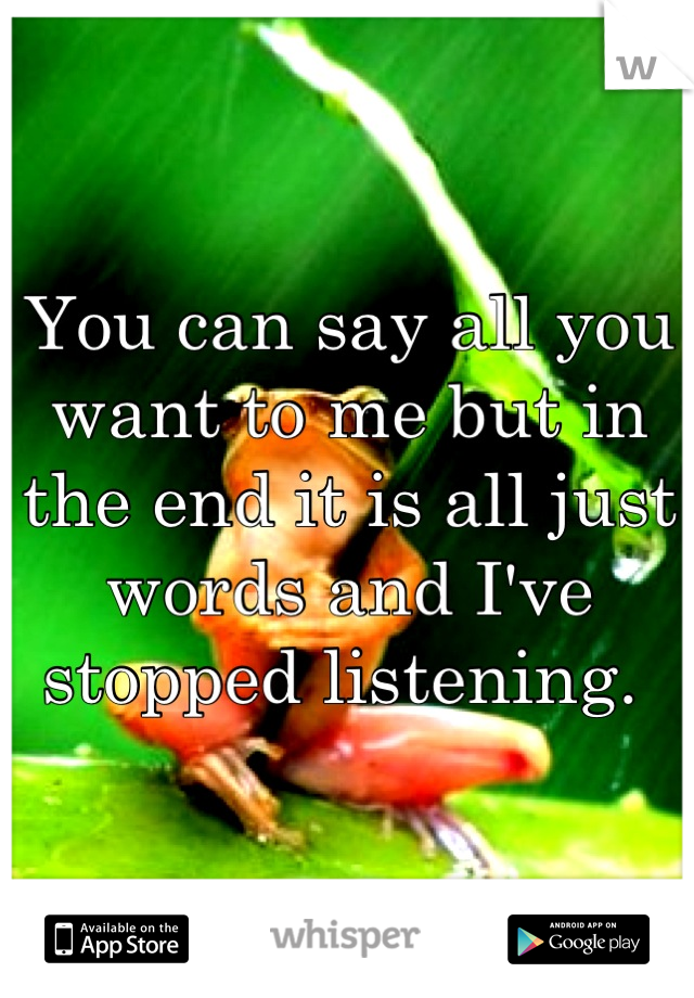 You can say all you want to me but in the end it is all just words and I've stopped listening.