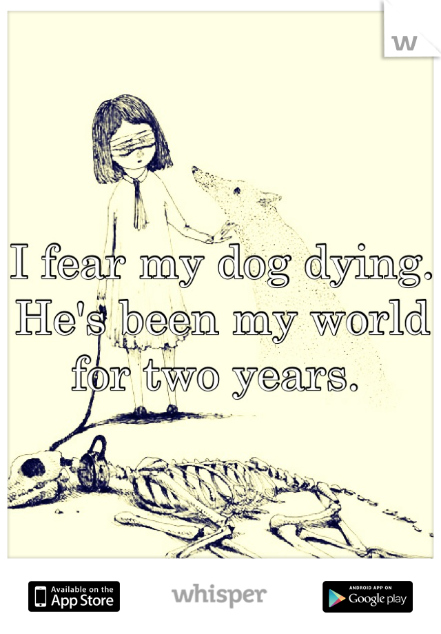 I fear my dog dying. He's been my world for two years.