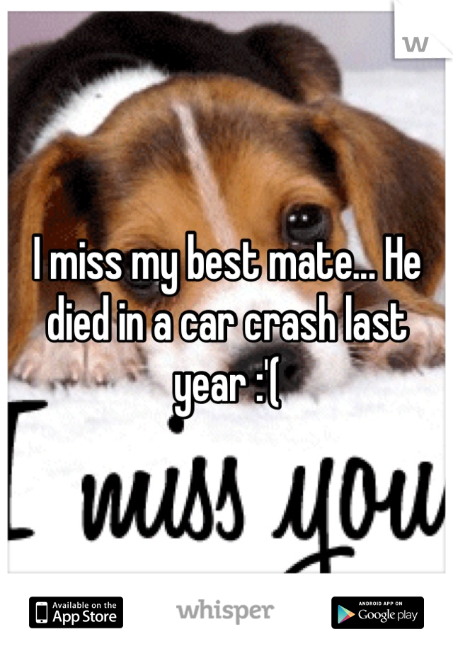 I miss my best mate... He died in a car crash last year :'(