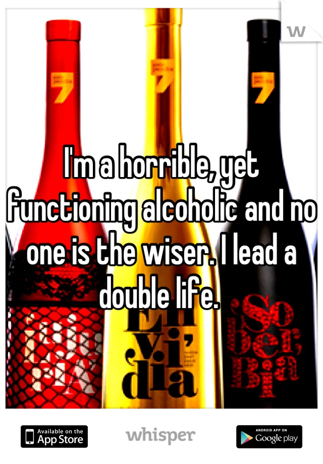 I'm a horrible, yet functioning alcoholic and no one is the wiser. I lead a double life.