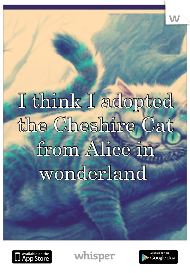 I think I adopted the Cheshire Cat from Alice in wonderland