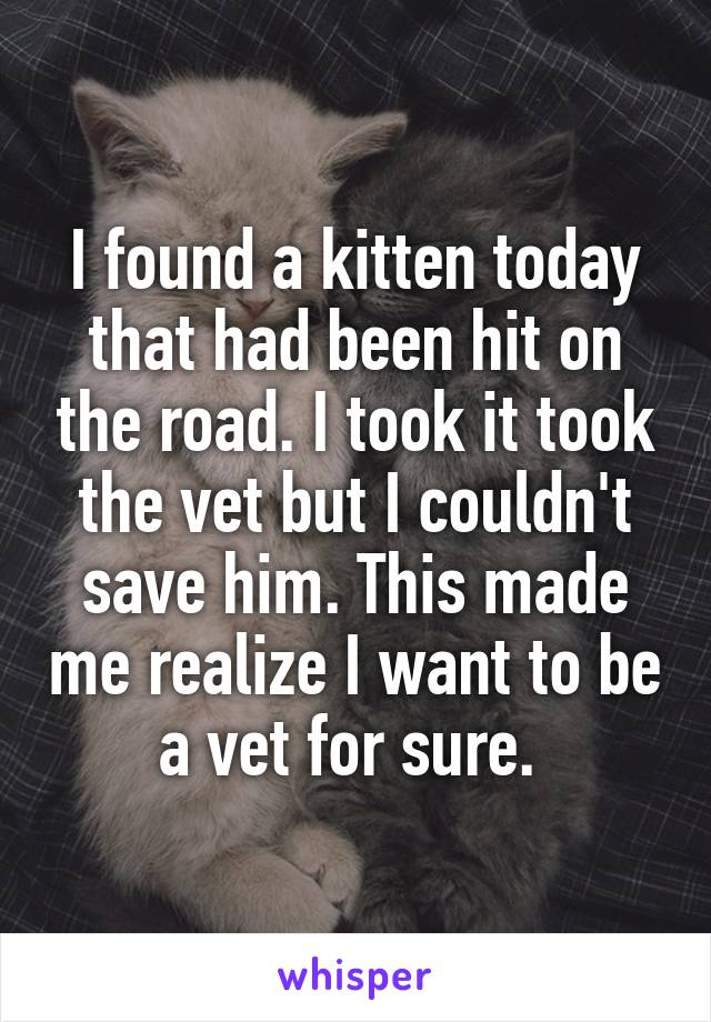 I found a kitten today that had been hit on the road. I took it took the vet but I couldn't save him. This made me realize I want to be a vet for sure.