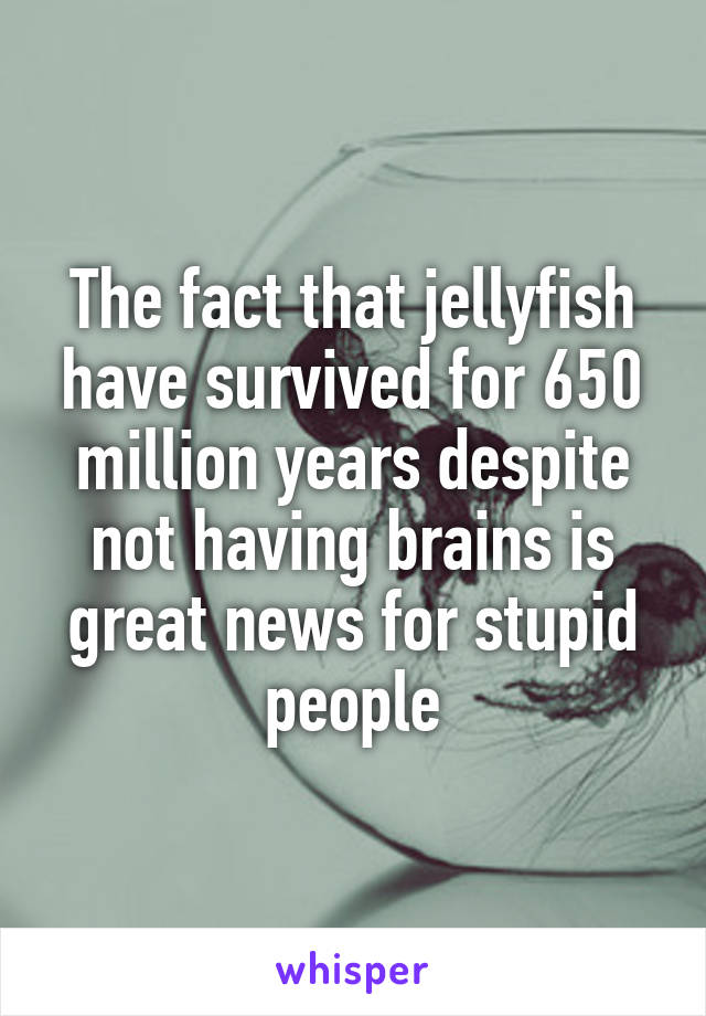 The fact that jellyfish have survived for 650 million years despite not having brains is great news for stupid people
