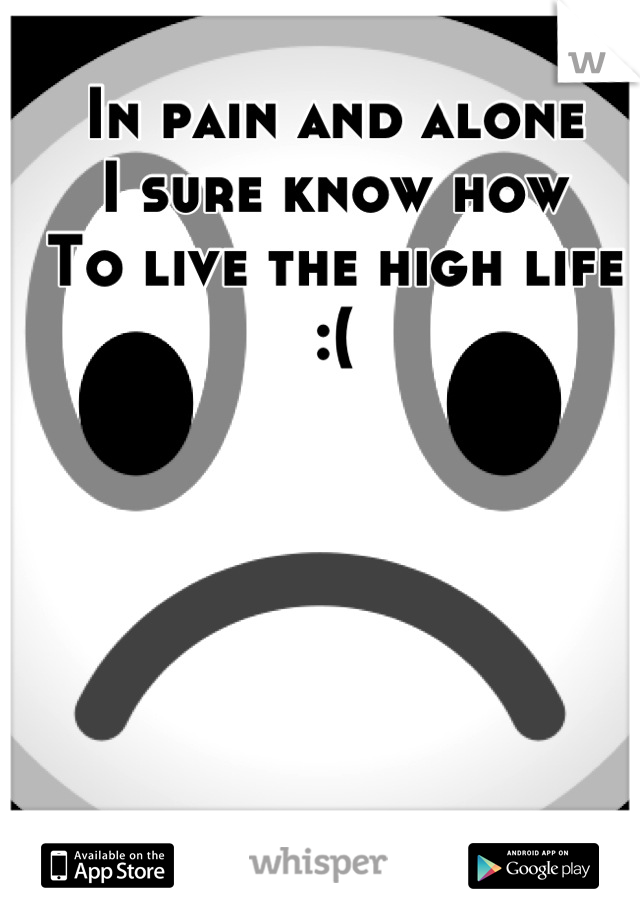 In pain and alone I sure know how To live the high life :(
