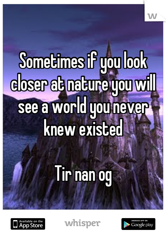 Sometimes if you look closer at nature you will see a world you never knew existed  Tir nan og