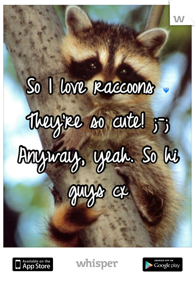So I love raccoons 💙 They're so cute! ;-; Anyway, yeah. So hi guys cx
