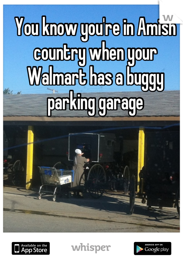 You know you're in Amish country when your Walmart has a buggy parking garage