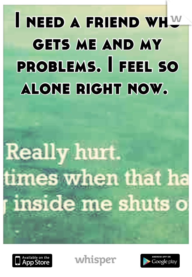 I need a friend who gets me and my problems. I feel so alone right now.