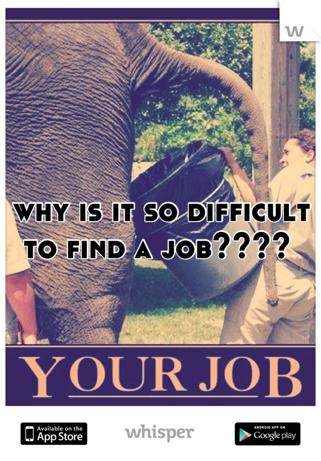 why is it so difficult to find a job????